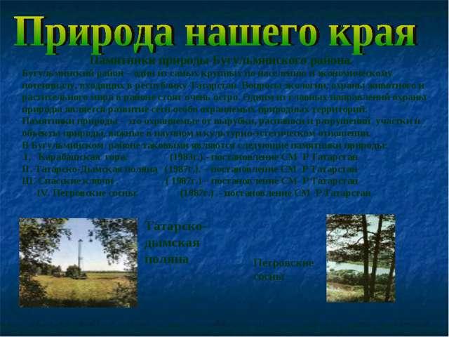 Памятники природы Бугульминского района. Бугульминский район – один из самых...