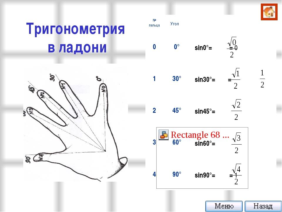 Тригонометрия в ладони № пальцаУгол α 00°  sin0°= = 0 130°  sin30°= = 2...