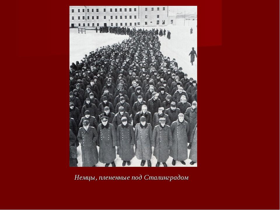 Немцы, плененные под Сталинградом