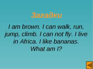 Загадки I am brown. I can walk, run, jump, climb. I can not fly. I live in A