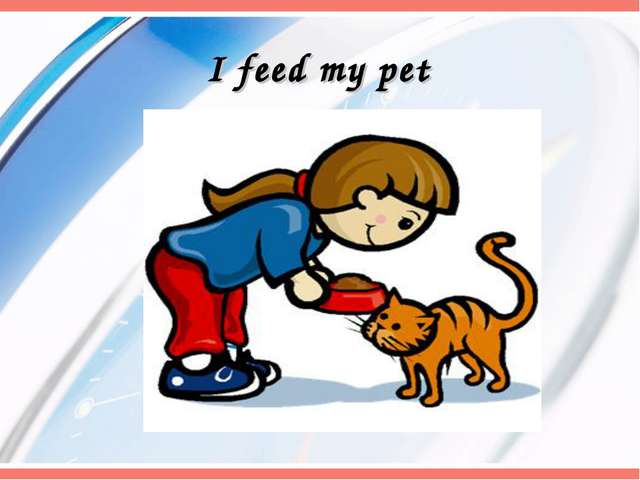 I feed my pet