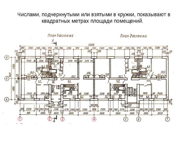 Числами, подчеркнутыми или взятыми в кружки, показывают в квадратных метрах п...