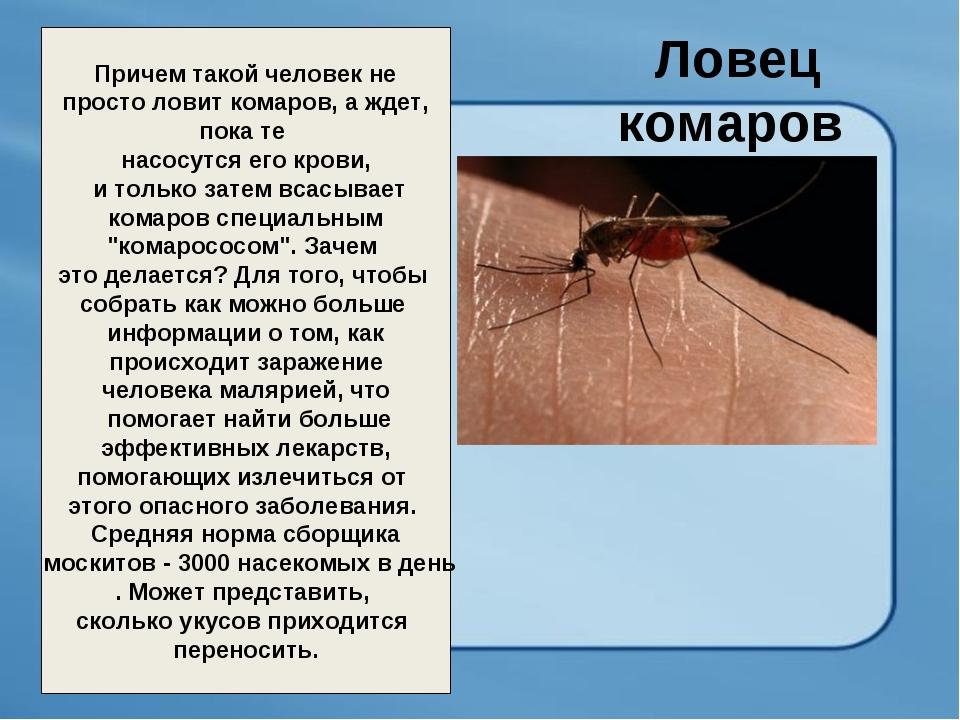 Ловец комаров Причем такой человек не просто ловит комаров, а ждет, пока те н...
