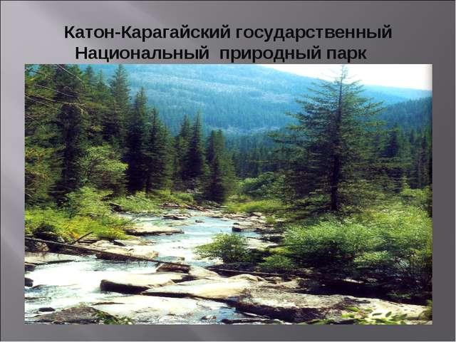Катон-Карагайский государственный Национальный природный парк