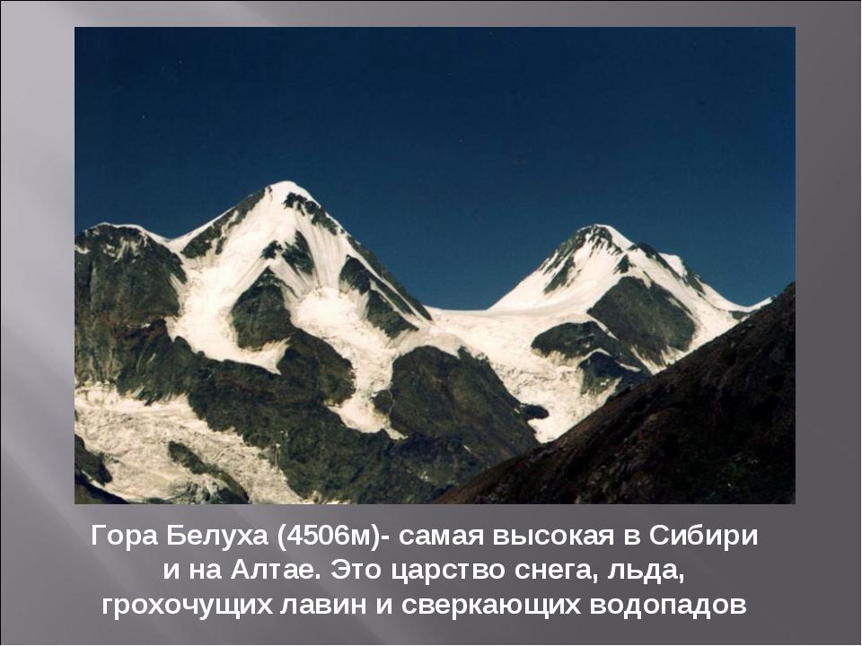 Гора Белуха (4506м)- самая высокая в Сибири и на Алтае. Это царство снега, ль...