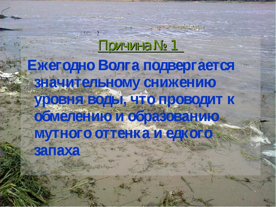 Причина № 1 Ежегодно Волга подвергается значительному снижению уровня воды, ч...