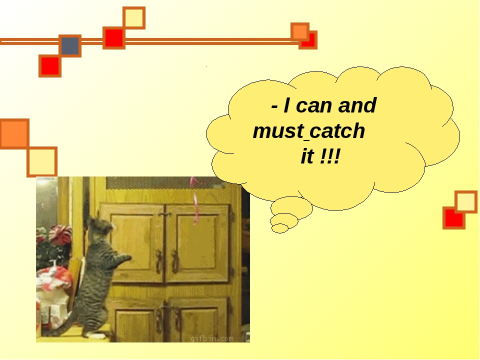 - I can and must catch it !!!