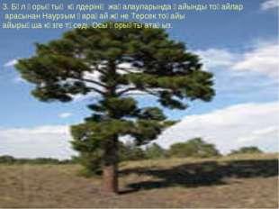 3. Бұл қорықтың көлдерінің жағалауларында қайынды тоғайлар арасынан Наурзым қ