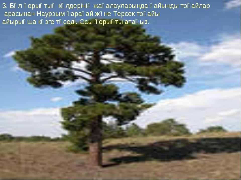 3. Бұл қорықтың көлдерінің жағалауларында қайынды тоғайлар арасынан Наурзым қ...