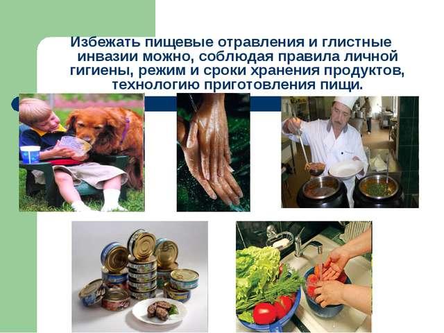 Избежать пищевые отравления и глистные инвазии можно, соблюдая правила лично...