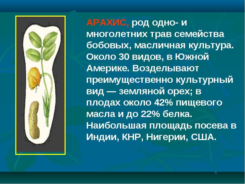 АРАХИС, род одно- и многолетних трав семейства бобовых, масличная культура. О...