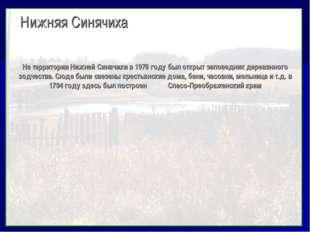 Нижняя Синячиха На территории Нижней Синячихи в 1978 году был открыт заповед