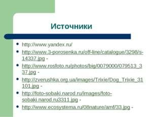 Источники http://www.yandex.ru/ http://www.3-porosenka.ru/off-line/catalogue