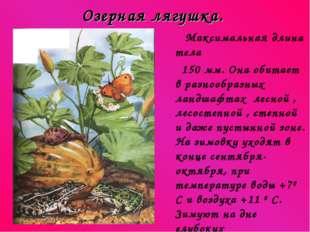 Озерная лягушка. Максимальная длина тела 150 мм. Она обитает в разнообразных