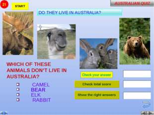 Check your answer WHICH OF THESE ANIMALS DON'T LIVE IN AUSTRALIA? CAMEL BEAR