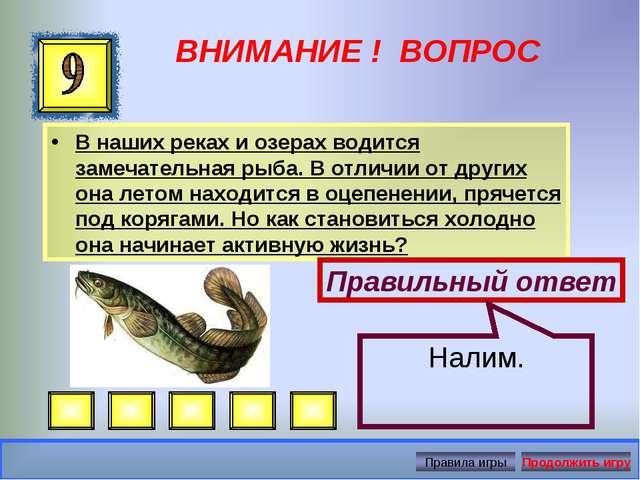 ВНИМАНИЕ ! ВОПРОС В наших реках и озерах водится замечательная рыба. В отличи...
