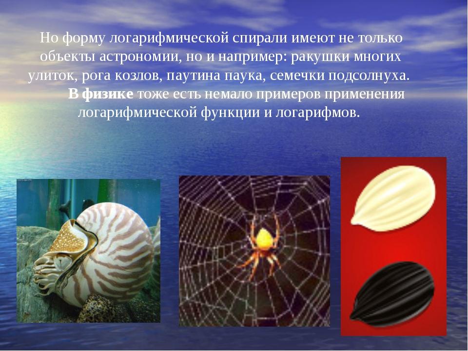 Но форму логарифмической спирали имеют не только объекты астрономии, но и нап...
