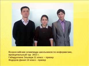 Всероссийская олимпиада школьников по информатике, муниципальный тур 2013 г.