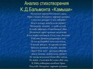 Анализ стихотворения К.Д.Бальмонта «Камыши» Полночной порою в болотной глуши