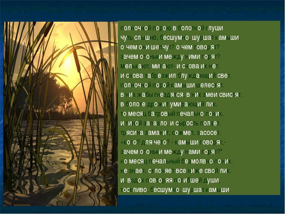 полночной порою в болотной глуши чуть слышно, бесшумно, шуршат камыши. о чем...