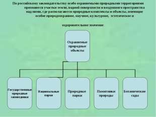 По российскому законодательству особо охраняемыми природными территориями при