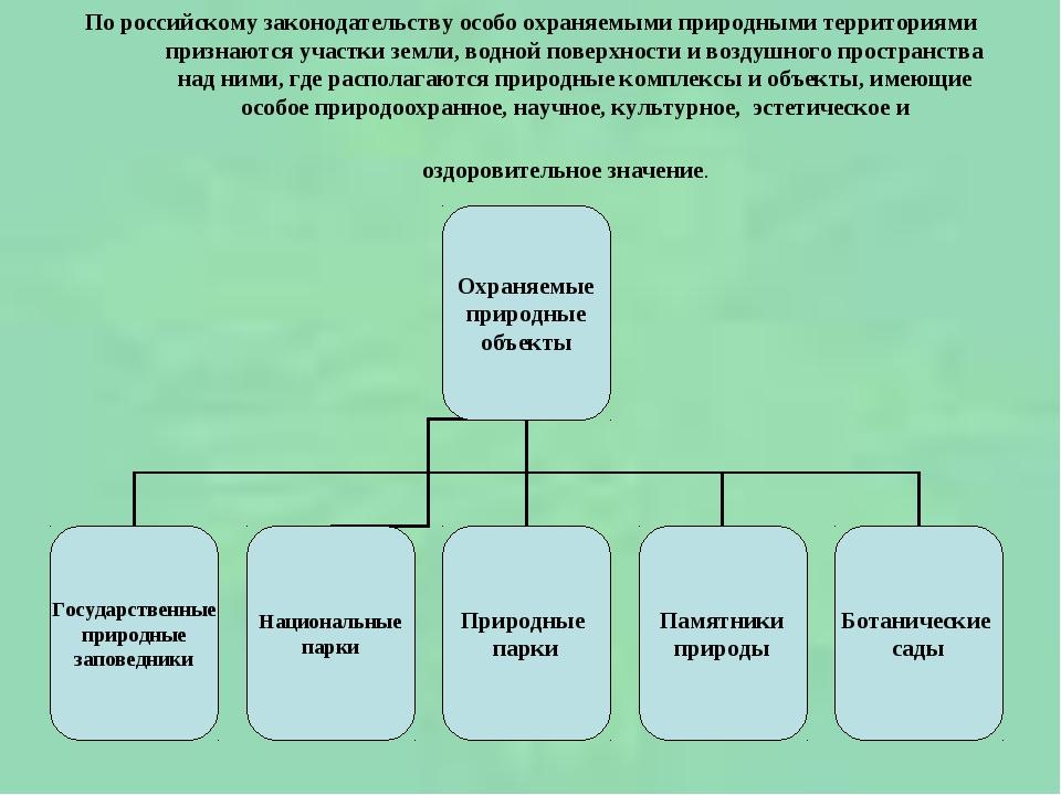 По российскому законодательству особо охраняемыми природными территориями при...