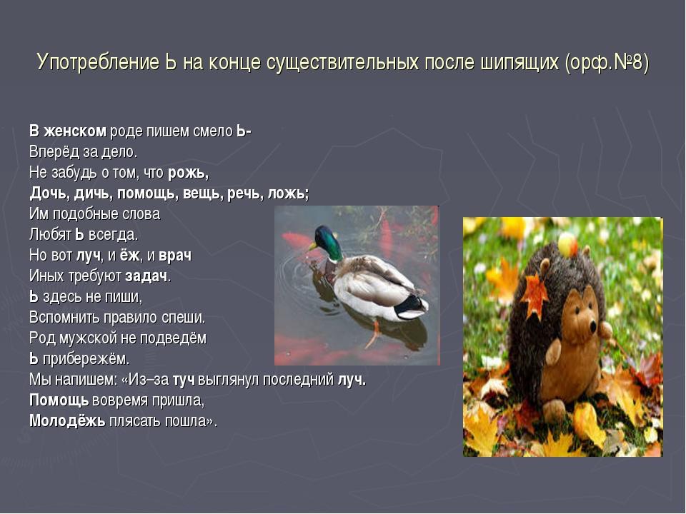 Употребление Ь на конце существительных после шипящих (орф.№8) В женском роде...