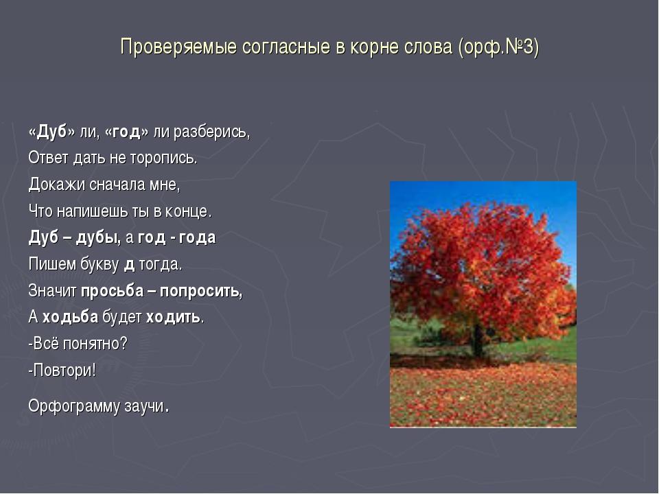 Проверяемые согласные в корне слова (орф.№3) «Дуб» ли, «год» ли разберись, От...