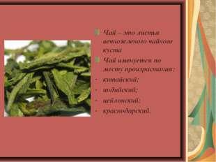 Чай – это листья вечнозеленого чайного куста Чай именуется по месту произрас