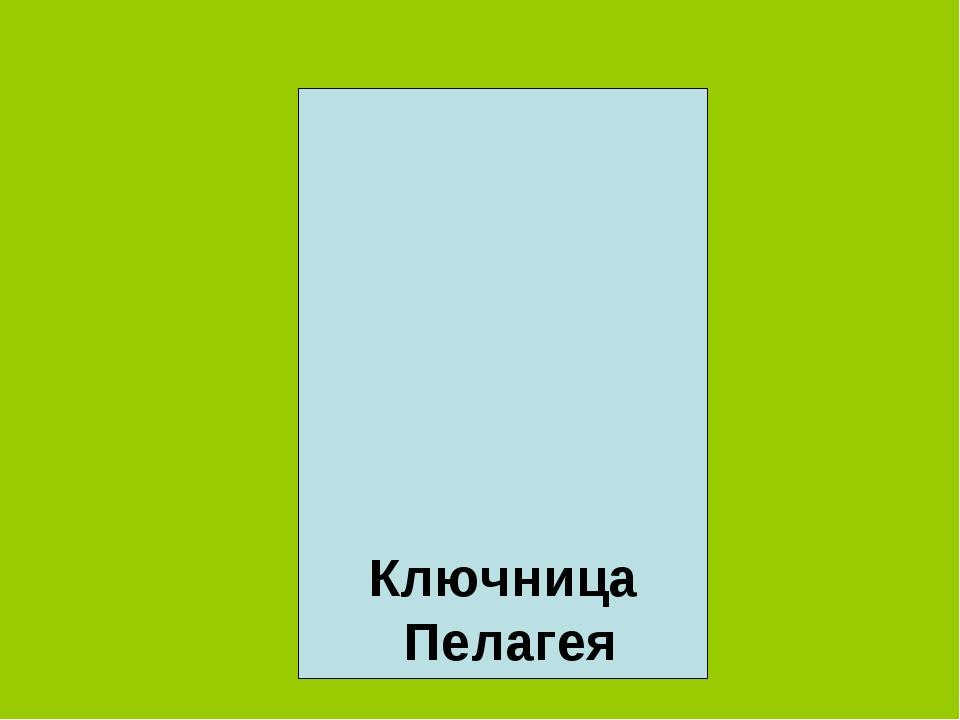 Ключница Пелагея