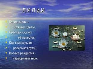 Л И Л И И Белая лилия – нежный цветок, Красиво изогнут её лепесток. Как коло
