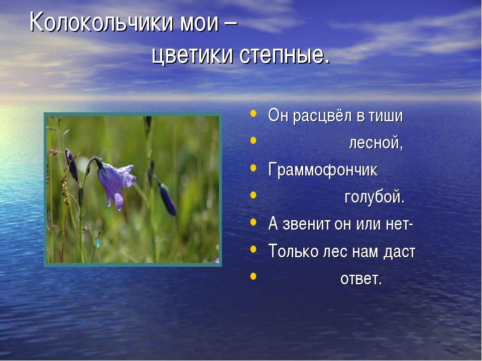 Колокольчики мои – цветики степные. Он расцвёл в тиши лесной, Граммофончик го...
