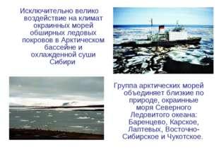 Исключительно велико воздействие на климат окраинных морей обширных ледовых п