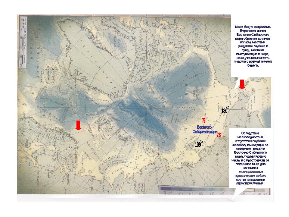 Море бедно островами. Береговая линия Восточно-Сибирского моря образует крупн...