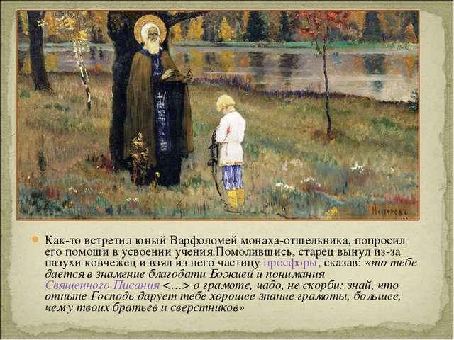 Как-то встретил юный Варфоломей монаха-отшельника, попросил его помощи в усво...