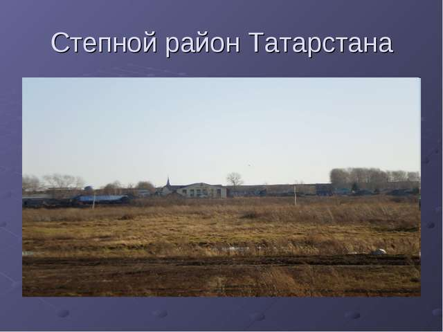 Степной район Татарстана