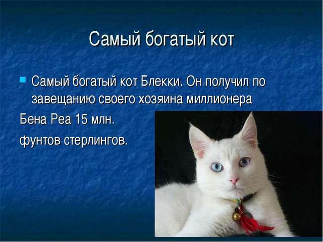Самый богатый кот Самый богатый кот Блекки. Он получил по завещанию своего хо...
