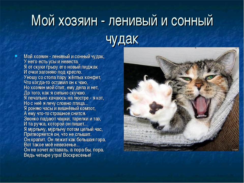Мой хозяин - ленивый и сонный чудак Мой хозяин - ленивый и сонный чудак, У не...