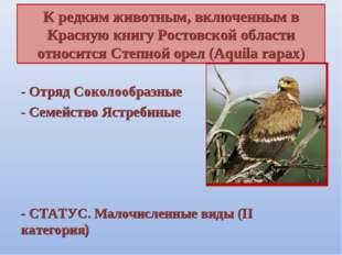 К редким животным, включенным в Красную книгу Ростовской области относится Ст