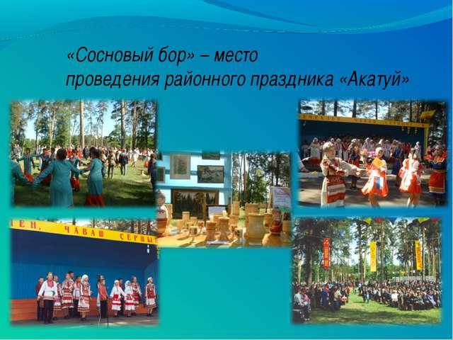 «Сосновый бор» – место проведения районного праздника «Акатуй»