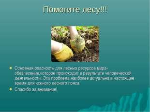 Помогите лесу!!! Основная опасность для лесных ресурсов мира-обезлесение,кото