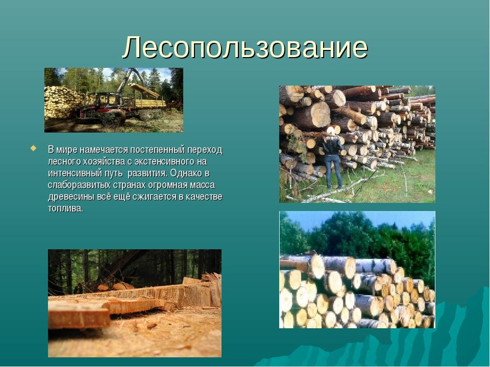 Лесопользование В мире намечается постепенный переход лесного хозяйства с экс...