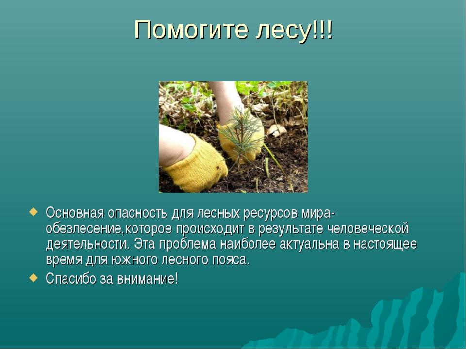 Помогите лесу!!! Основная опасность для лесных ресурсов мира-обезлесение,кото...