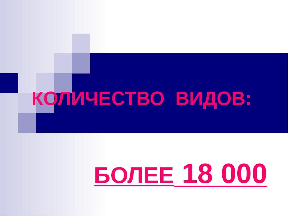 КОЛИЧЕСТВО ВИДОВ: БОЛЕЕ 18 000