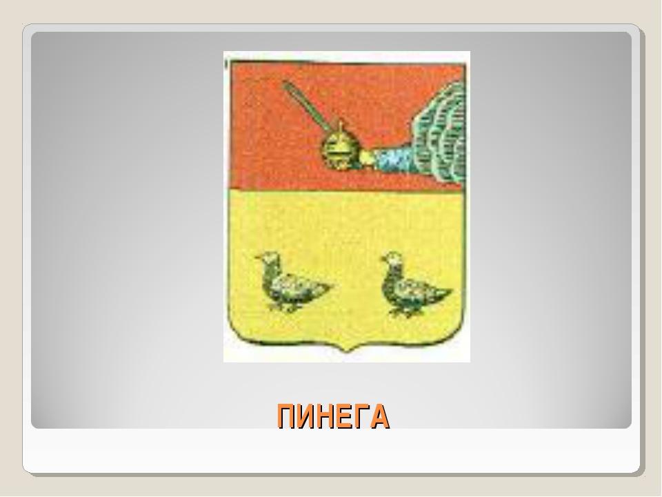 ПИНЕГА