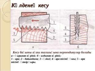 Көлденең кесу Кесу бағыты ағаш талшығына перпендикуляр болады а – қырынан көр
