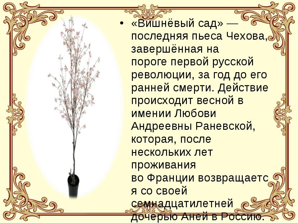 «Вишнёвый сад»— последняя пьеса Чехова, завершённая на порогепервой русской...