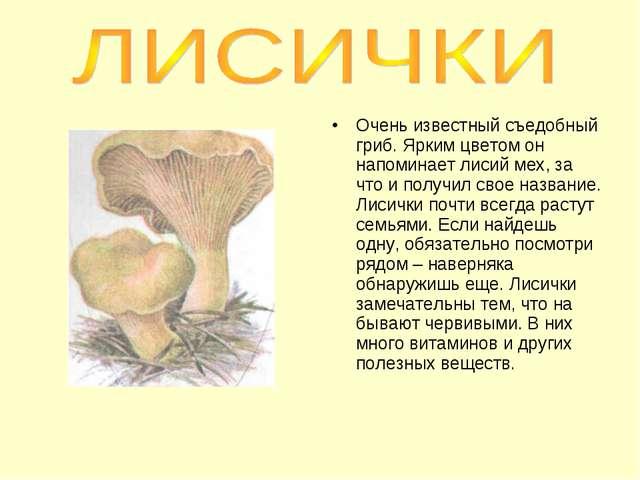 Очень известный съедобный гриб. Ярким цветом он напоминает лисий мех, за что...