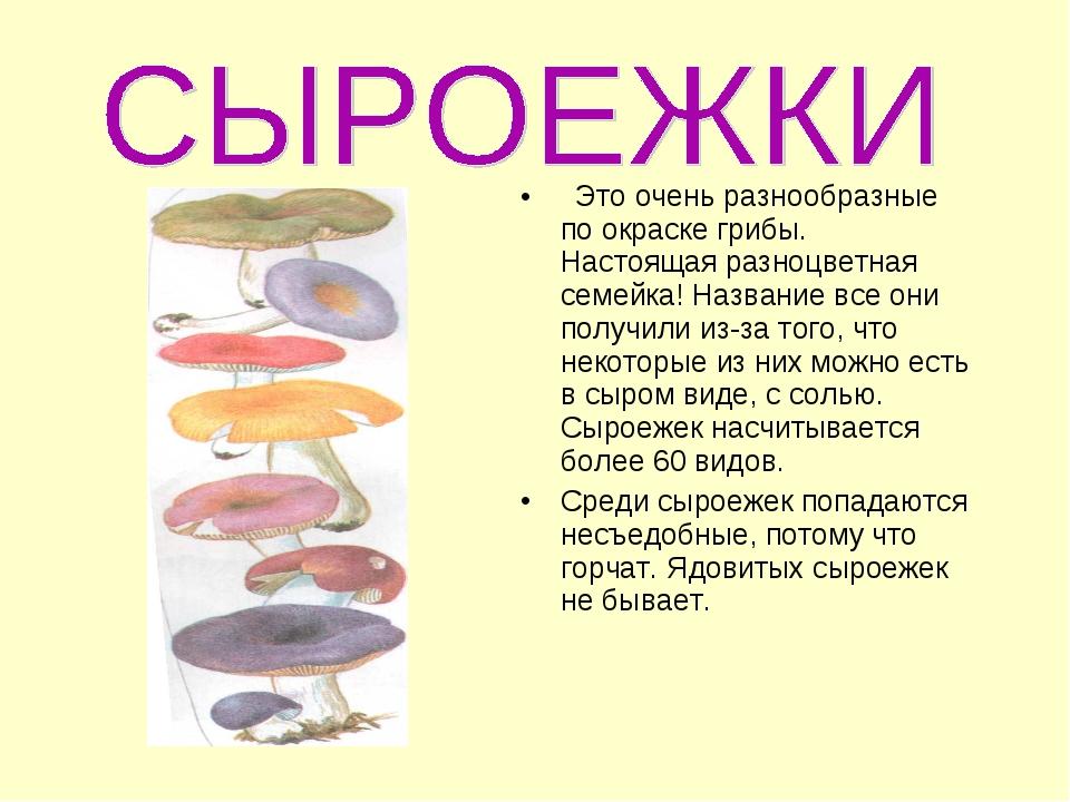 Это очень разнообразные по окраске грибы. Настоящая разноцветная семейка! На...