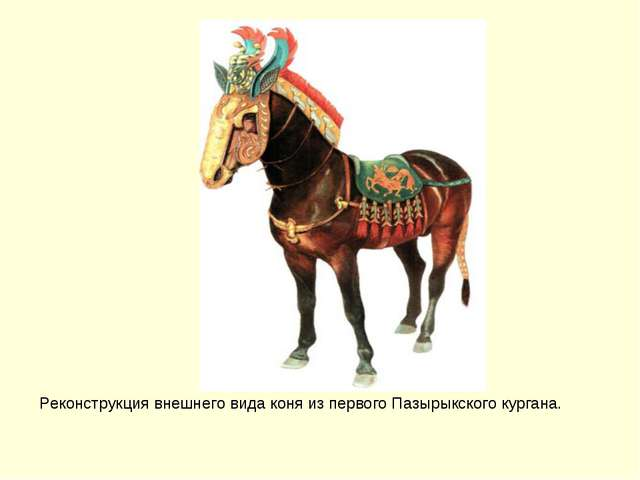 Реконструкция внешнего вида коня из первого Пазырыкского кургана.